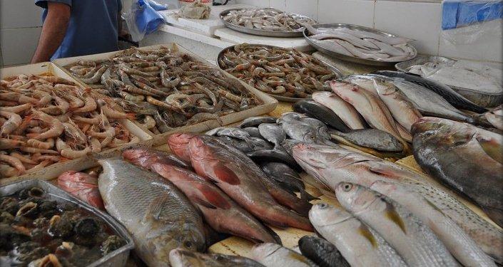 在最近5-10年时间里,世界渔业产量将'触顶'。每年可收获约9000万吨。
