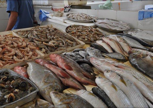 渔业70%收入来自出口的情况不应存在