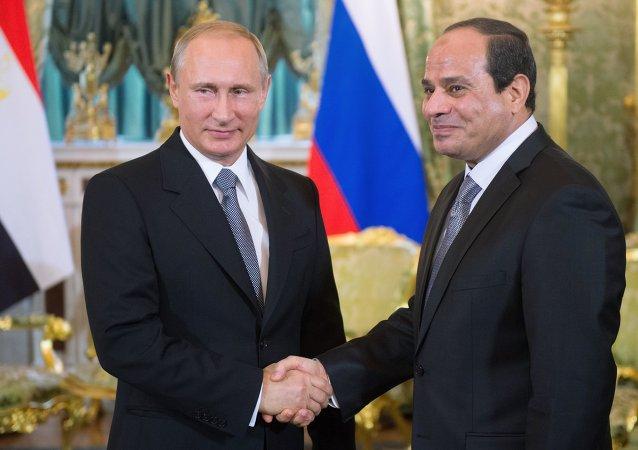 普京:俄计划加大对埃及粮食出口