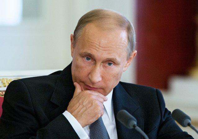 普京:欧亚经济联盟与埃及或成立自由贸易区并改用本币结算