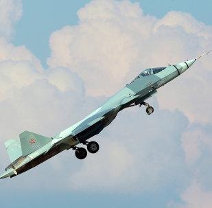 俄罗斯调查安-148飞机失事原因