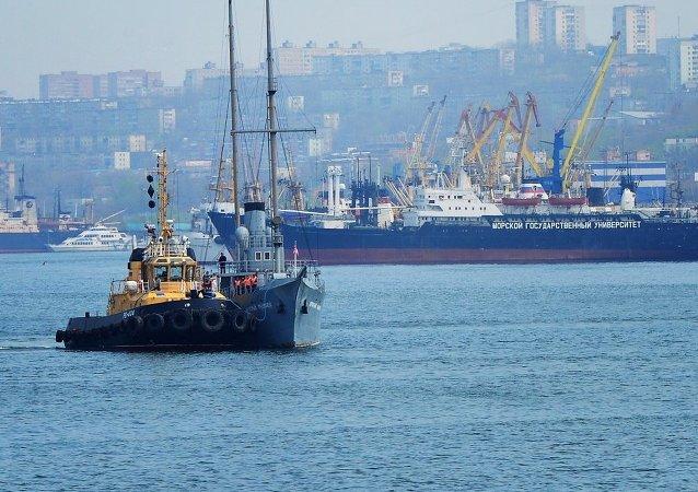 俄政府将讨论关于符拉迪沃斯托克自由港简化签证制度的法案