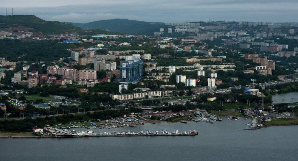 俄总统驻远东代表:不会评价符拉迪沃斯托克自由港入驻企业商业计划