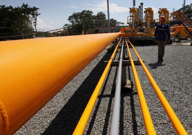 俄驻华大使:东线对华供气项目正按时间表实施