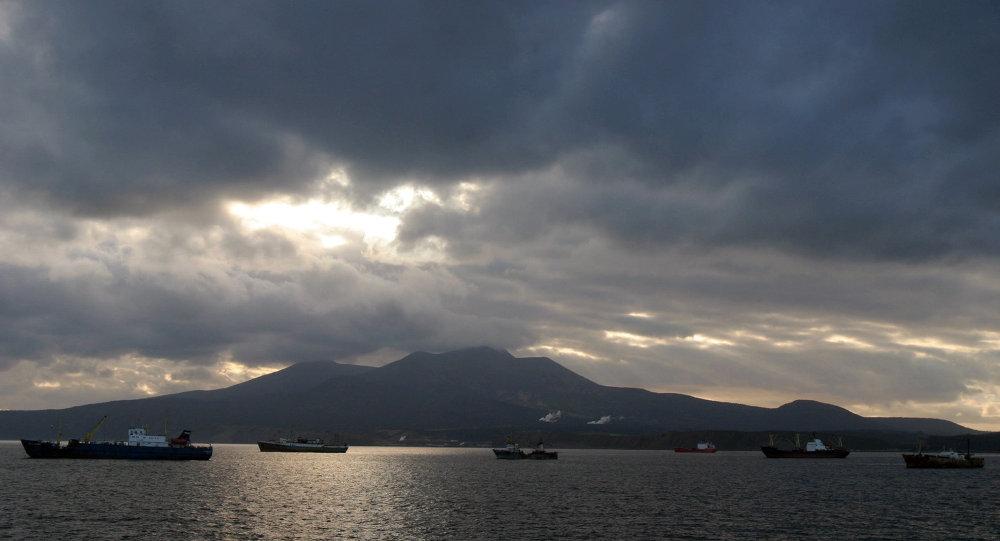 媒体:日本拟2017年起与俄讨论有关南千岛群岛的计划
