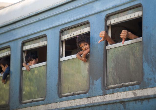 电视台:经克罗地亚前往欧盟的难民或闯入雷区