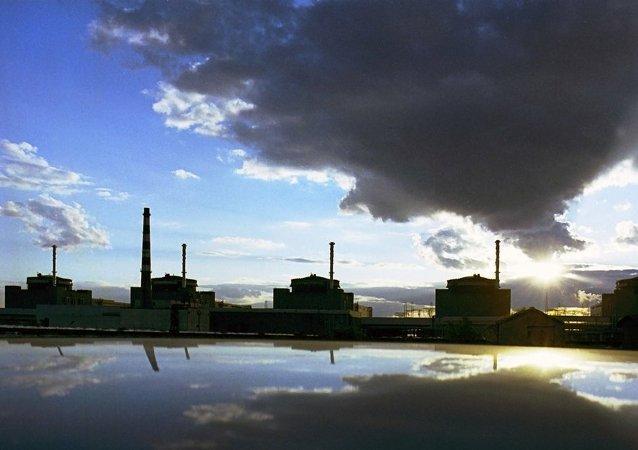乌克兰能源部:乌计划令国内40%的核电机组改用美国西屋的燃料