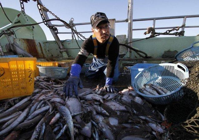 俄外交部称,俄方认为,与美国间有关打击非法海洋捕捞的协议体现了开展务实互动的意愿。