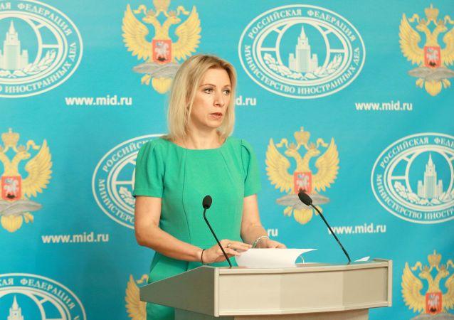 媒体关于俄为叙问题会谈准备文件报道不属实