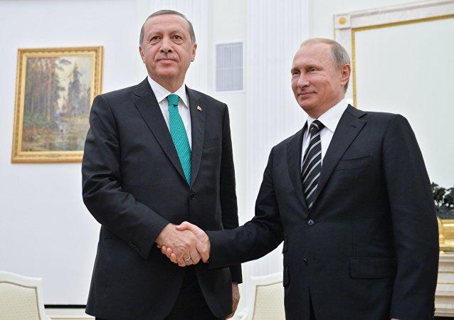 俄土总统商定就双边和国际问题继续交流