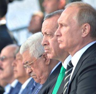 土耳其总统计划将与普京讨论俄空军在叙行动