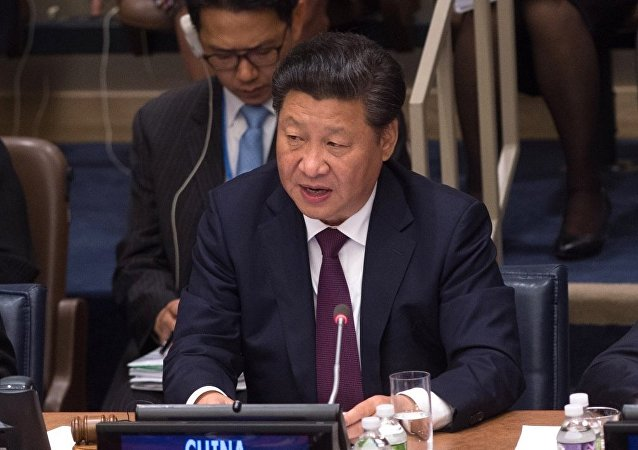 中国外交部:习近平将出席二十国集团领导人第十次峰会和亚太经合组织第二十三次领导人非正式会议