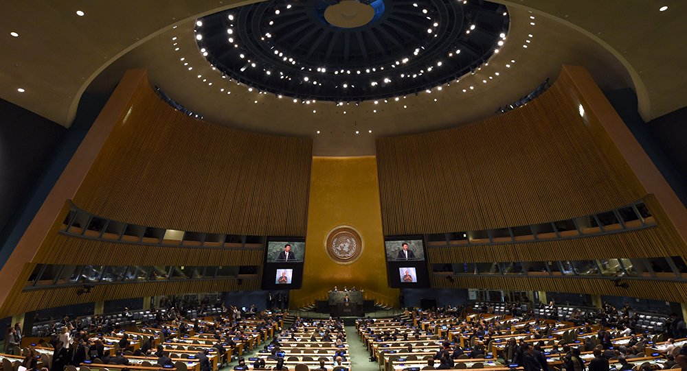 联合国大会