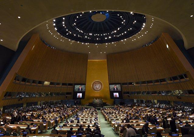 联合国大会周年纪念会议