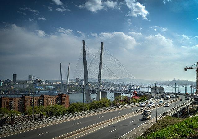 俄总统驻远东全权代表:符拉迪沃斯托克自由港声明投资额超1000亿卢布
