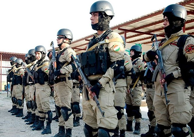 美伊教官开始在伊拉克境内培训250名民兵