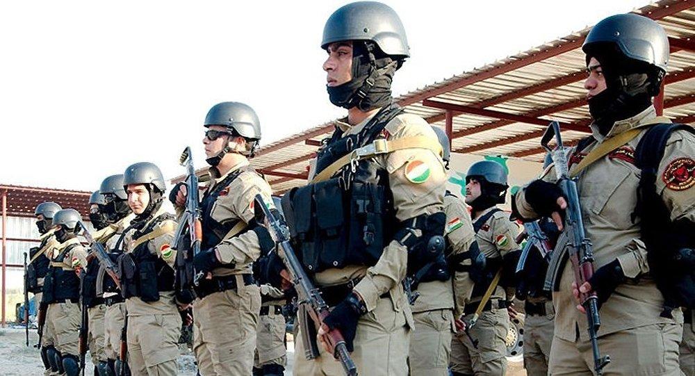 媒体:解放摩苏尔战役打响以来约1600名库尔德民兵死亡