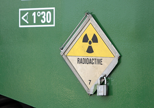 在摩尔多瓦制止了一起向伊斯兰国销售放射性材料的企图