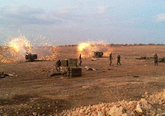 叙军在哈马省 (资料图片)