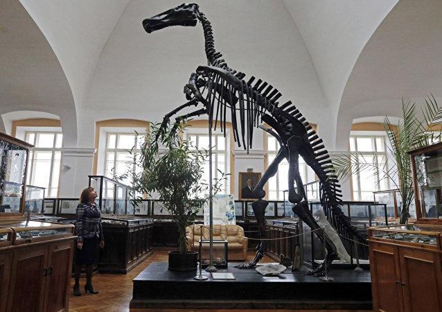 俄罗斯学者提出另一种关于恐龙灭绝的假说