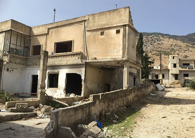 俄军总参谋部:叙政府军攻占多个居民点