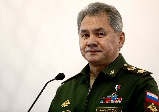 俄国防部长绍伊古在新年来临之际向俄驻外军事基地服役士兵致谢
