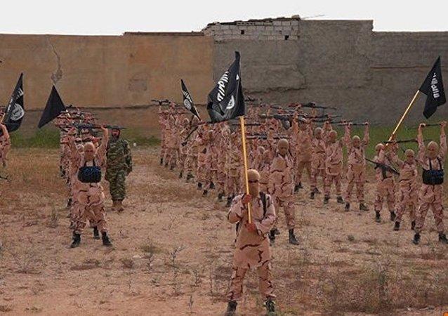 上合组织地区反恐机构:该组织执法机关已着手建立新欧亚安全走廊