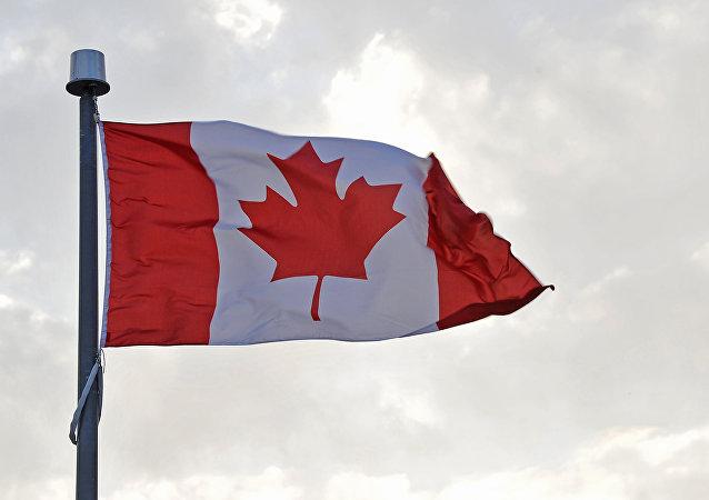 媒体:加拿大计划从10月25日起对进口钢铁征收关税