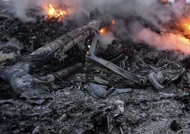 埃及救援人员在西奈半岛俄客机失事地点找到175具遗体
