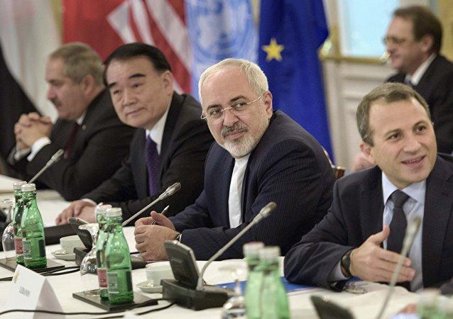 维也纳会议是政治解决叙利亚危机的重要努力