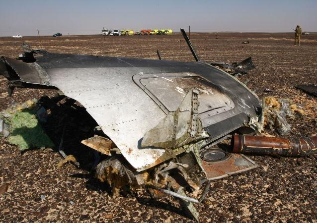 媒体:美专家准备参与A321客机埃及空难调查