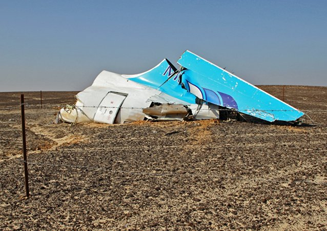 埃及民航部驳斥A321残骸开始运往开罗的消息