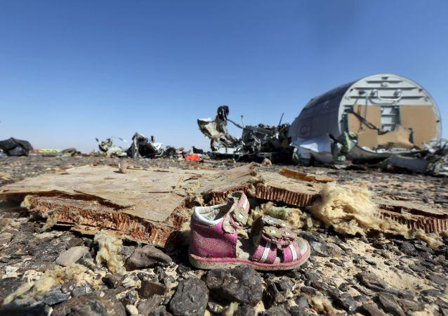俄A321失事航班碎片残留物质已被送至莫斯科用以检查