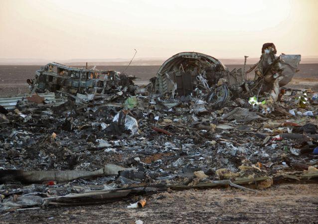 """俄防长:俄A321客机空难由""""伊斯兰国""""分支制造"""