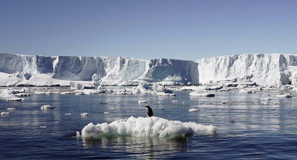中国成全球第二大赴南极旅游客源地 9年间增长近40倍