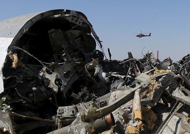 媒体:俄客机西奈空难已交给埃及国家安全检察院调查