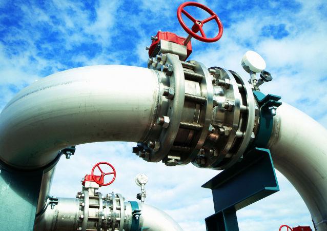 阿尔及利亚认为可以在页岩气开采领域与俄气公司合作