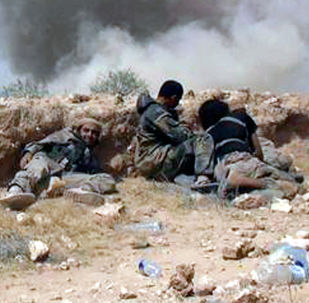 美防长与联盟磋商叙利亚外国武装分子遣返回国问题