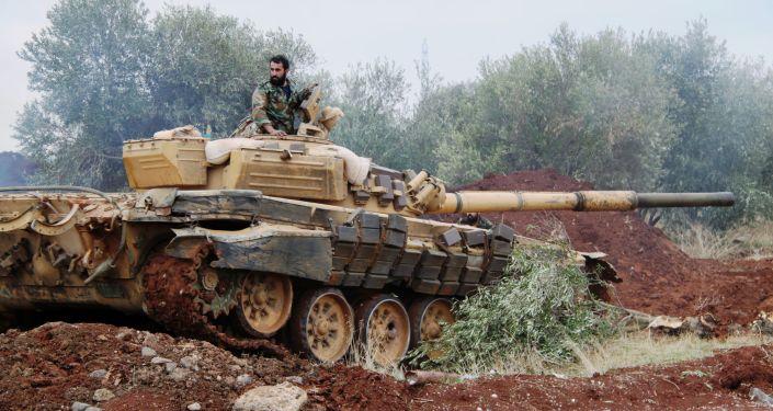 俄叙防长讨论两国军事和军事技术合作问题