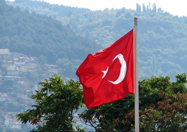 中国专家:土耳其将失去在叙利亚问题上的发言权