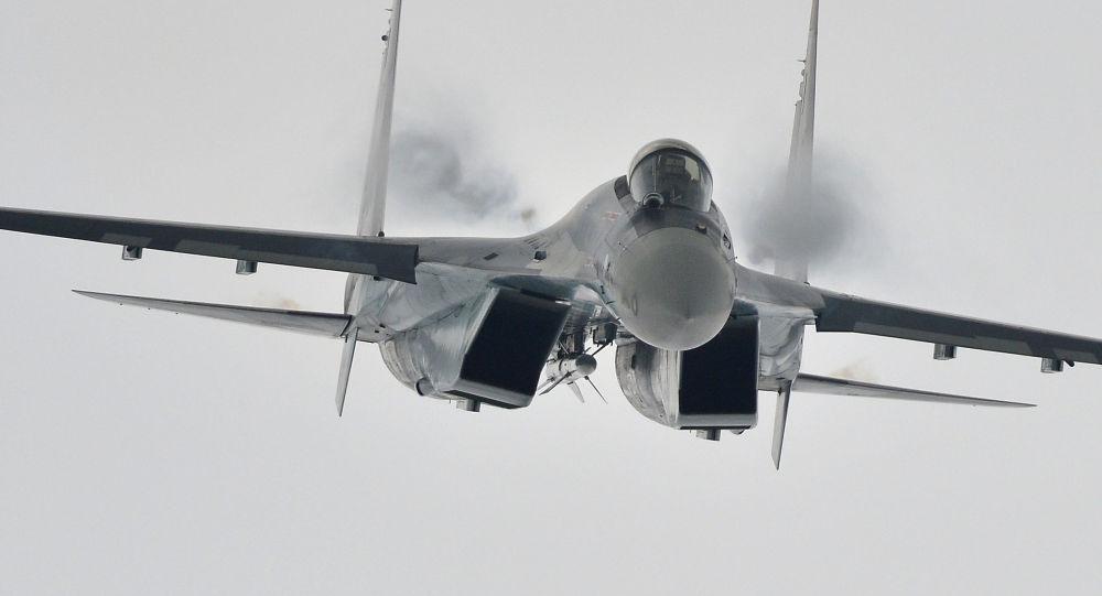 媒体:印尼与俄罗斯将签署购买10架苏-35的合同