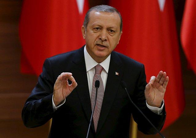 土耳其总统:土方不会就苏-24事件道歉
