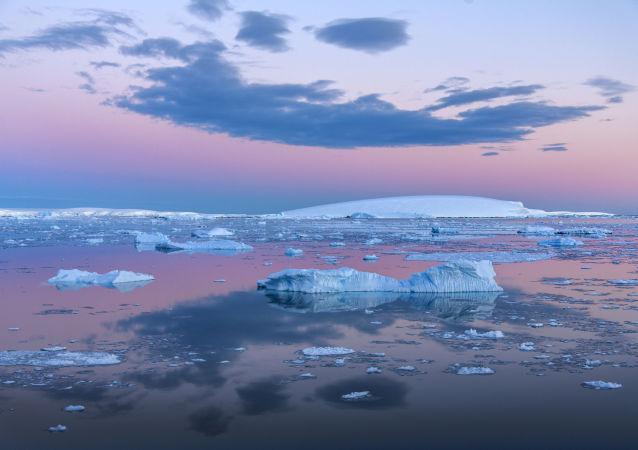 日本无视国际法庭禁令,计划在南极洲恢复捕鲸业