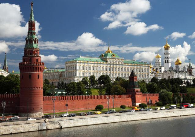 普京:俄将继续发展本国民主体制