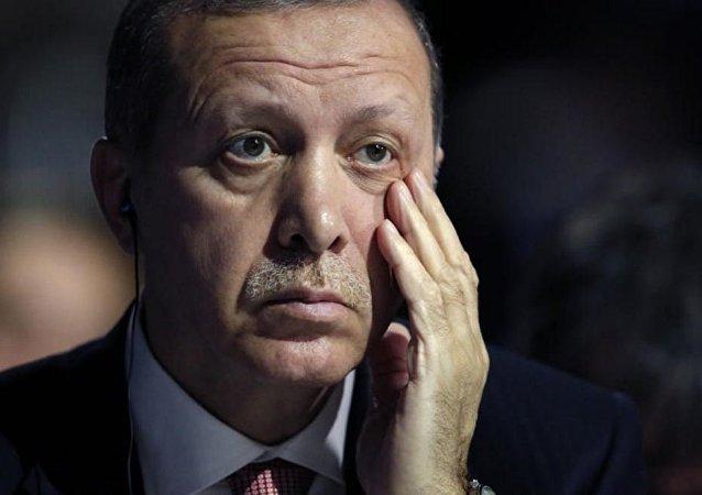 德国媒体:埃尔多安 让土耳其噩梦成真