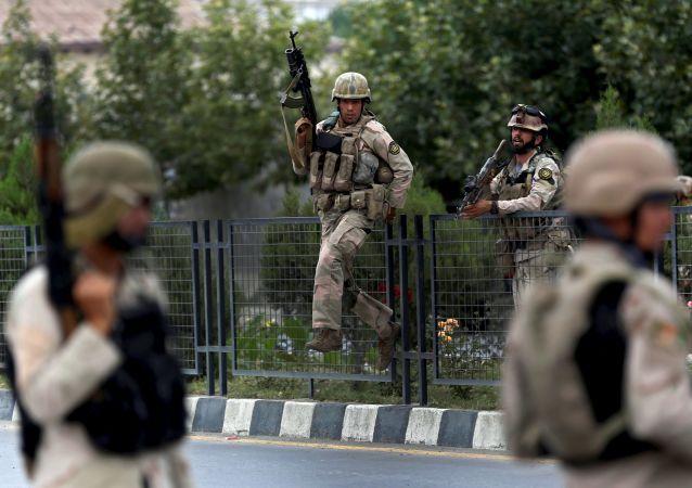 """阿富汗国防部称在国家东部消灭""""伊斯兰国""""财政官/资料图片/"""