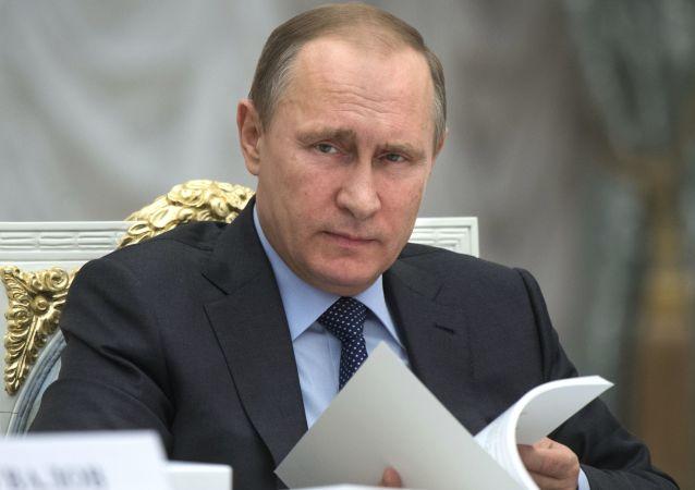 """普京责成检查""""特别经济区""""股份公司开支的有效性"""