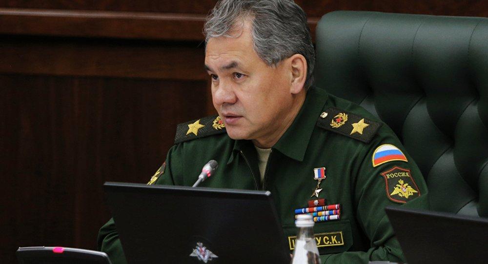 俄防长:五角大楼企图从武力角度与俄对话毫无前景