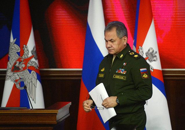 绍伊古:俄和北约有关空中事件的协议如今至关重要