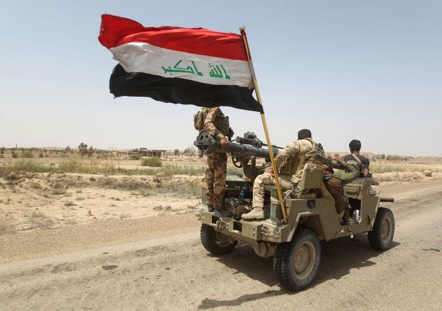 伊拉克议员:伊拉克未必会加入沙特组织的反恐联盟